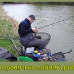 Как правильно поймать рыбку