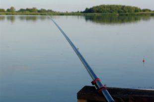 Ловля линя поплавочными снастями на озере