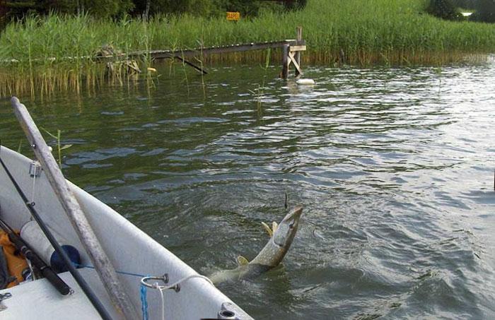 рыбалка на плавучую сеть видео
