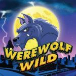 Игровой слот Werewolf Wild